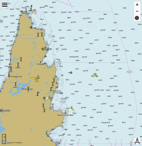 Motion Bay to/à Cape St Francis Marine Chart - Nautical Charts App