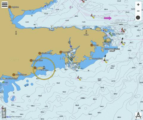 Cape Canso to/à Country Island Marine Chart - Nautical Charts App